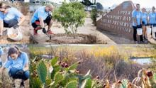 Stanbridge student volunteers have helped restore the Upper Newport Bay Nature Preserve through restoration projects, planting over 850 native plants.